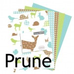 Collections-Prune