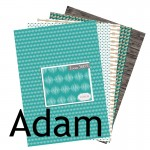 Collection_Adam_Com16_scrapbooking_papier_imprimable_A4_telecharger
