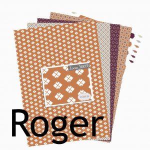 http://com16laboutique.blogspot.fr/2013/10/papier-imprimer-a4-print-roger.html