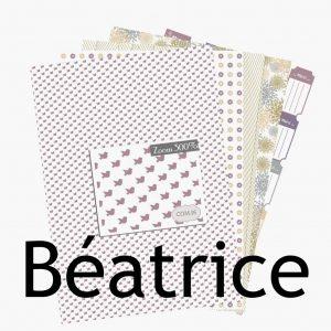 http://com16laboutique.blogspot.fr/2014/02/papier-imprimer-a4-print-beatrice.html