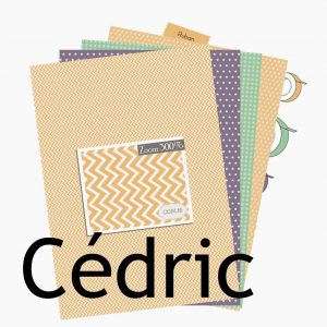 http://com16.fr/fr/126-collection-cedric