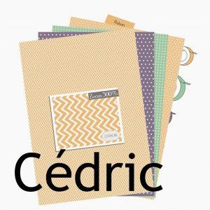 http://com16.fr/fr/126-collection-cedric