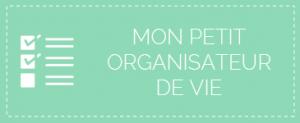 organisateur-icone