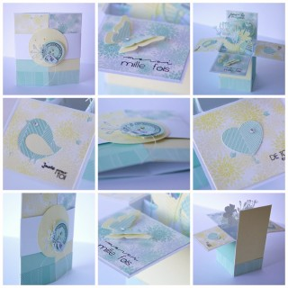 pimprenelle-pour-Com16-card-in-a-box-collection-Bertille-avril-2015-PicMonkey Collage2
