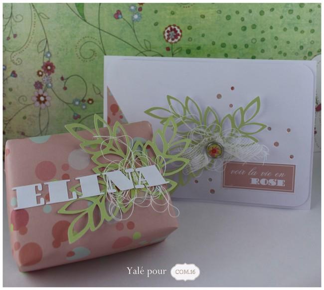 02a_yale_pour_com16 _carte_paquet_cadeau_naissance