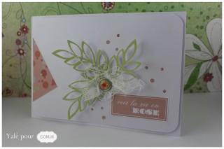 02b_yale_pour_com16 _carte_paquet_cadeau_naissance