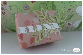 02c_yale_pour_com16 _carte_paquet_cadeau_naissance