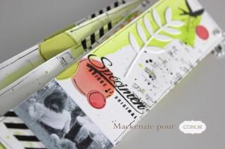 Mackenzie - DT com16 - mini album - marque page-dos
