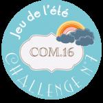Challenge n°7 – Jeu de l'été 2017