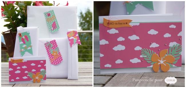 pimprenelle-pour-Com16-ensemble-cadeau-estival-gaspard-collage-2