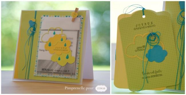 pimprenelle-pour-com16-papier-imprimable-carte-à-billet-anniversaire-septembre-20151