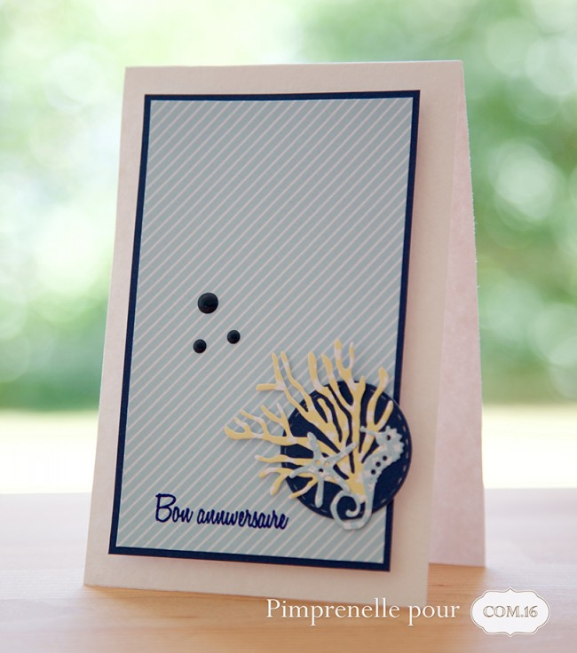 pimprenelle-pour-Com16-papier-imprimable-carte-anniversaire-estival