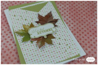 01b_yale_pour_com16_carte_sac_biscuits_automne