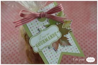 01c_yale_pour_com16_carte_sac_biscuits_automne