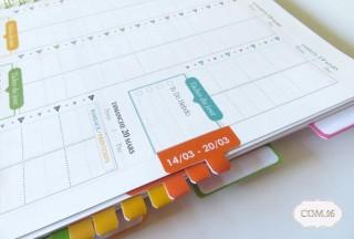 Organisateur-de-Vie-Com.16-agenda-organiseur-familial-professionnel-2016-onglets-zoom1