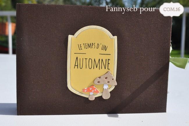 mini- automne- nathan-ambre COM16