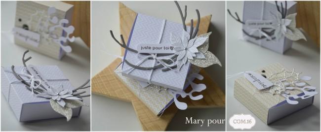 Mary_pour com16_boites