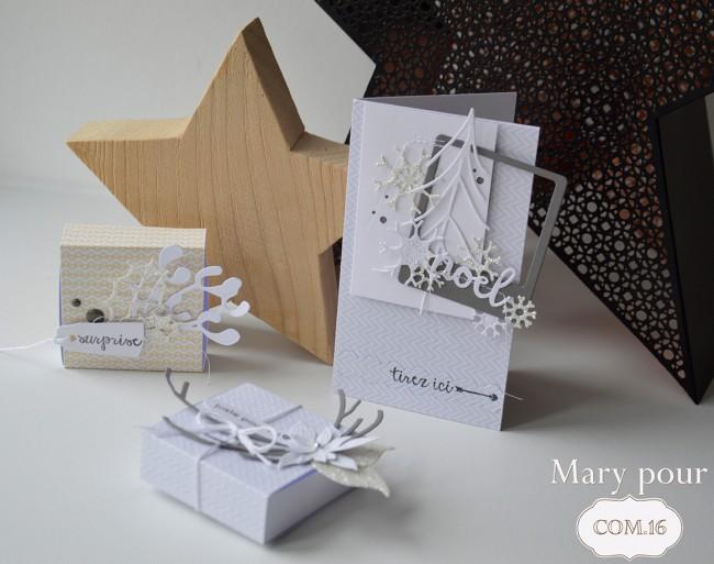 Mary_pour com16_carte voeux et boites