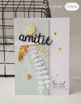 Mary_pour com16_carte amitie