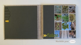 marthilde_pour_com16_collection diane_album nature1