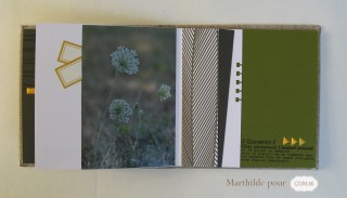 marthilde_pour_com16_collection diane_album nature6