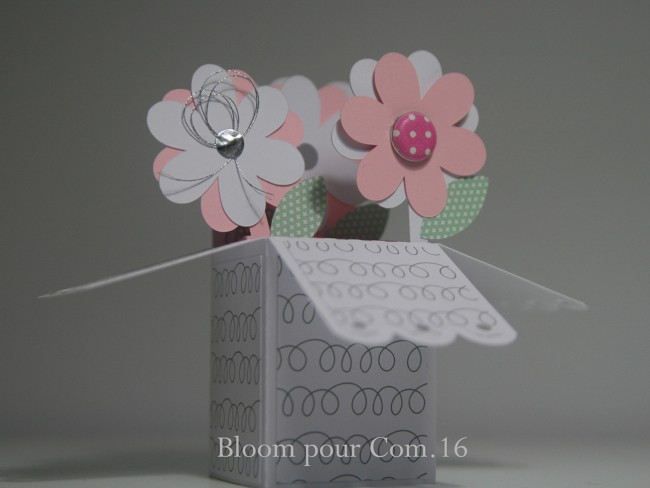 002 carte boite