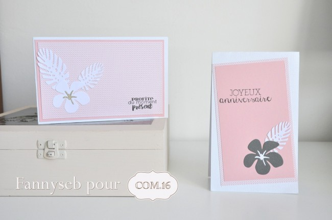 cartes anniversaire juin 2016 collection +®liot papiers  COM16 SIGNATURE