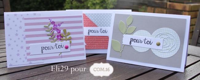 eli29_com16-cartes_pochettes