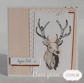dani-bertille-cerf1-com-16