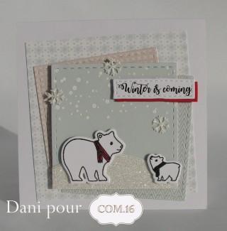 dani-carte4-ethan-com-16