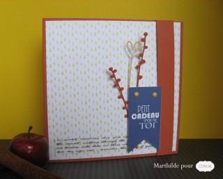 marthilde_pour_com16_cartekdotampons_sandra-17_sandra19_cesar26