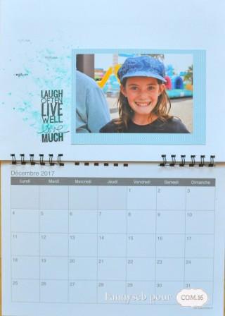calendrier 2017 dec fannyseb collections suzie, bertille papiers COM16 SIGNATURE